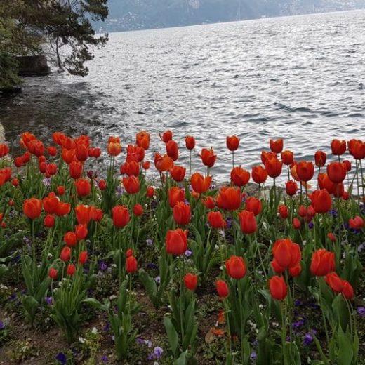 viaggi di primavera
