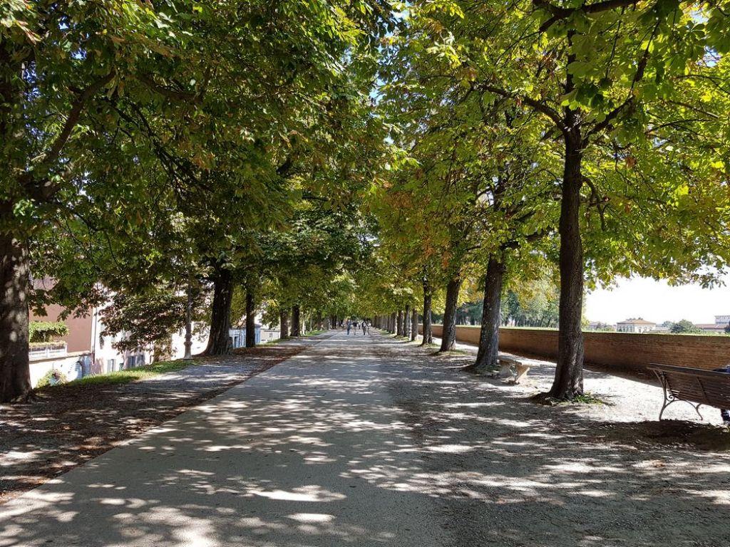 una passeggiata sulle mura di Lucca