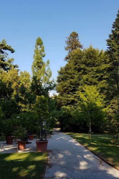 cosa visitare a Lucca