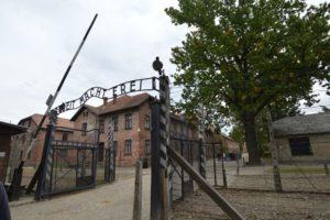 visita ad Auschwitz birkenau